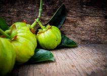 Βότανα για απώλεια βάρους